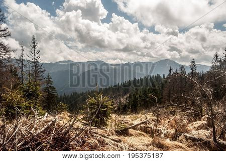panorama of main ridge of Velka Fatra mountains in Slovakia from Jarabina hill during spring day with blue sky and clouds