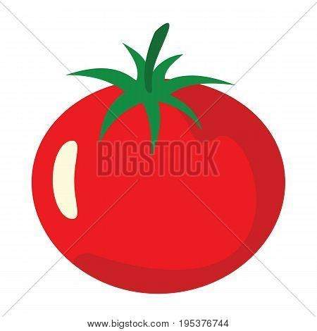 Tomato icon in cartoon flat style isolated object vegetable organic eco bio product from the farm vector illustration. Tomato object for vegetarian design