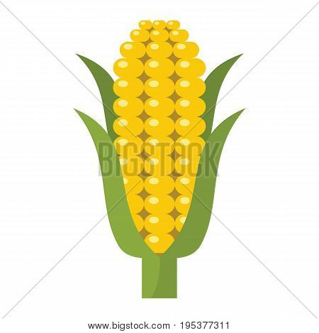 Corn icon in cartoon flat style isolated object vegetable organic eco bio product from the farm vector illustration. Corn object for vegetarian design