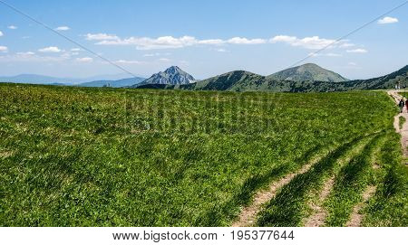 on Snilovske sedlo pass with mountain meadow hiking trail and hills on the background in Mala Fatra mountains in Slovakia during nice spring day with blue sky and clouds