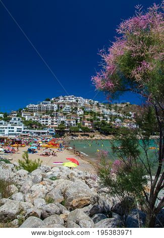 Vertical view of Montgo beach on the Costa Brava in summertime