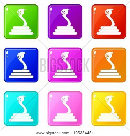 Cobra icons of 9 color set isolated vector illustration