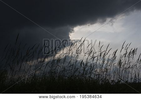 nature scenery with cloudy sky dark background with place for your white text