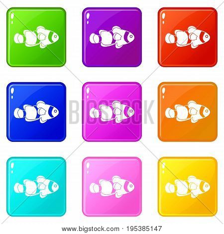 Fish clown icons of 9 color set isolated vector illustration
