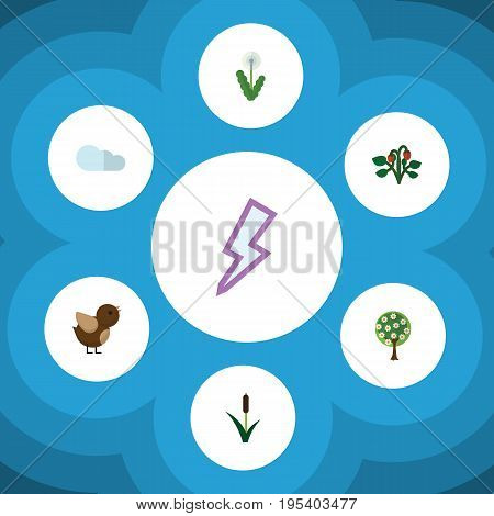 Flat Icon Natural Set Of Bird, Overcast, Tree And Other Vector Objects. Also Includes Cattail, Flower, Reed Elements.