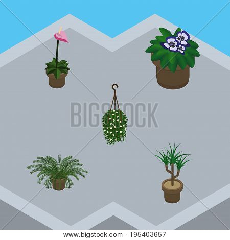 Isometric Plant Set Of Flowerpot, Blossom, Houseplant And Other Vector Objects. Also Includes Botany, Fern, Flowerpot Elements.
