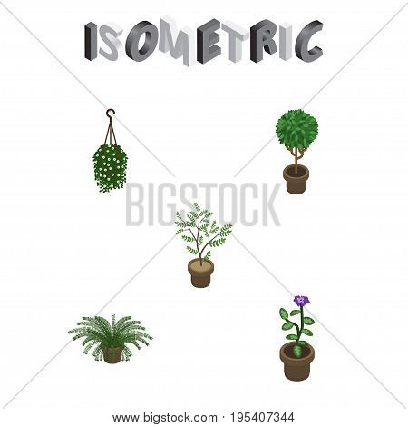 Isometric Plant Set Of Plant, Fern, Tree And Other Vector Objects. Also Includes Plant, Fern, Pot Elements.