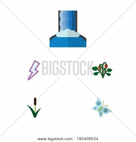 Flat Icon Ecology Set Of Cattail, Cascade, Berry And Other Vector Objects. Also Includes Reed, Grass, Monarch Elements.