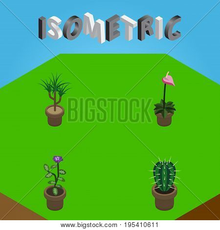 Isometric Flower Set Of Flower, Grower, Houseplant And Other Vector Objects. Also Includes Flowerpot, Flower, Cactus Elements.