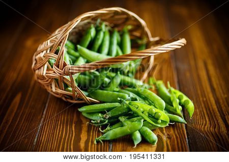 Fresh Early Green Peas In A Basket
