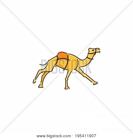 Camel vector logo. One-humped camel Dromedar running vector illustration. Camel on white background