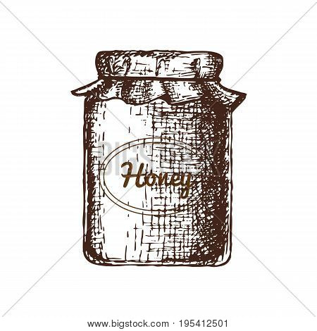 Hand drawn ink sketch illustration of honey pot, organic nature product. Vector