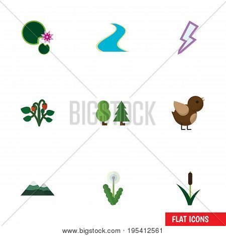 Flat Icon Natural Set Of Lightning, Forest, Berry And Other Vector Objects. Also Includes Bird, Storm, Strawberry Elements.