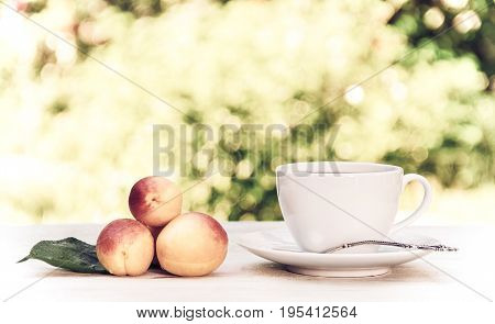 A cup of morning tea in the summer garden. White cup on white table.