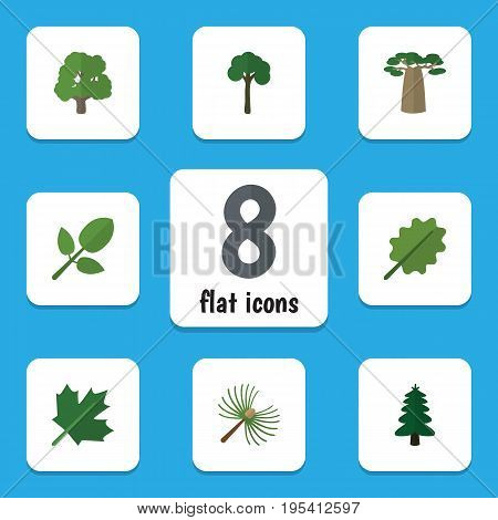 Flat Icon Ecology Set Of Oaken, Alder, Evergreen And Other Vector Objects. Also Includes Maple, Oak, Evergreen Elements.