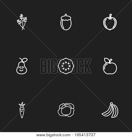 Set Of 9 Editable Vegetable Icons. Includes Symbols Such As Tropical Fruit, Duchess, Currant And More. Can Be Used For Web, Mobile, UI And Infographic Design.