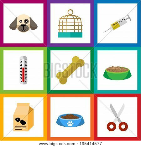 Flat Icon Pets Set Of Temperature Measurement, Nutrition Box, Osseous And Other Vector Objects. Also Includes Cage, Food, Cat Elements.