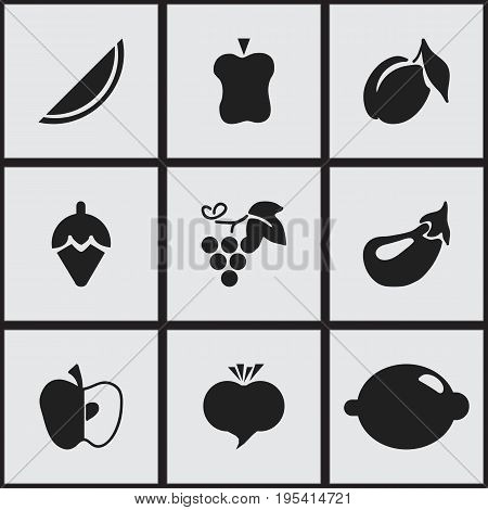Set Of 9 Editable Berry Icons. Includes Symbols Such As Radish, Bitten, Melon And More. Can Be Used For Web, Mobile, UI And Infographic Design.