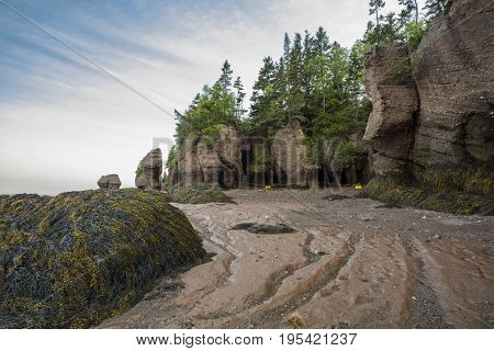 The icon Hopewell Rocks in New Brunswich. Popular tourist destination the Bay of Fundy has the highest tides in the world.