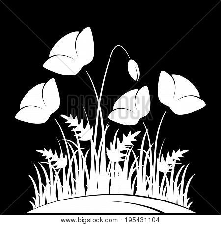 vector clump of corn poppies in grass isolated on black background