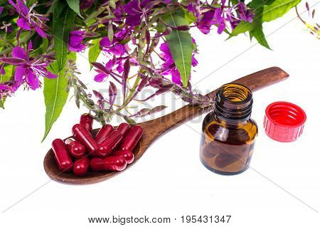 Homeopathy. Herbal capsules, medicinal plants on white background. Studio Photo