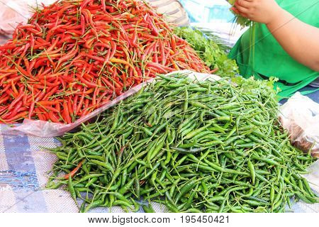 Fresh chilli for cooking in the market