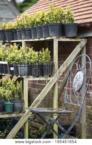 Beautiful Old Vintage Potting Shed Exterior Detail In English Countryside Garden