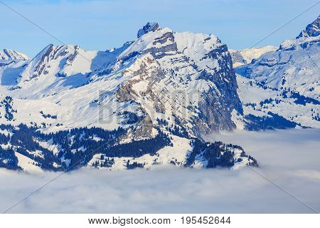 Summits of Alps in Switzerland rising from a sea of fog - wintertime view from the Fronalpstock mountain in the Swiss canton of Schwyz.