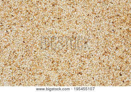 Dry Sesame seed background organic food ingradient background