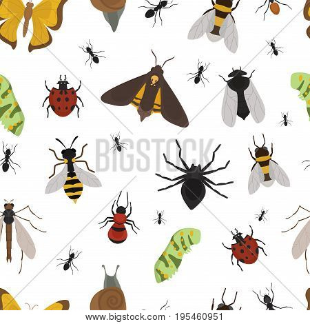 Fly insects wildlife entomology bug animal nature beetle biology buzz icon vector illustration. Wild summer mosquito pest with wing natural character pattern seamless background