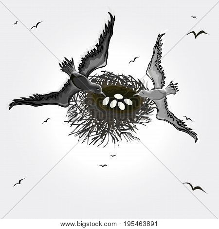 Black and white vector illustration of a married couple of birds over their nest