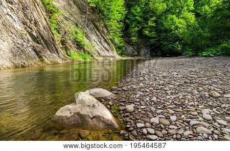 Rocky Shore Of Calm Forest River