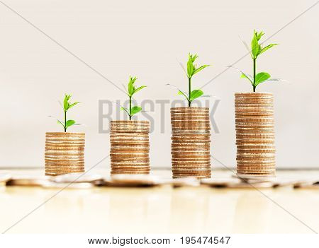 step of coins stacks with tree growing on top loft style background money saving and investment concept.