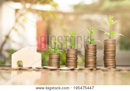 wooden house model and step of coins stacks with tree growing on top nature background money saving and investment or family planning concept over sun flare silhouette tone.