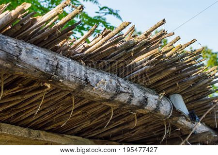 Thatched roof in old village building in evening time