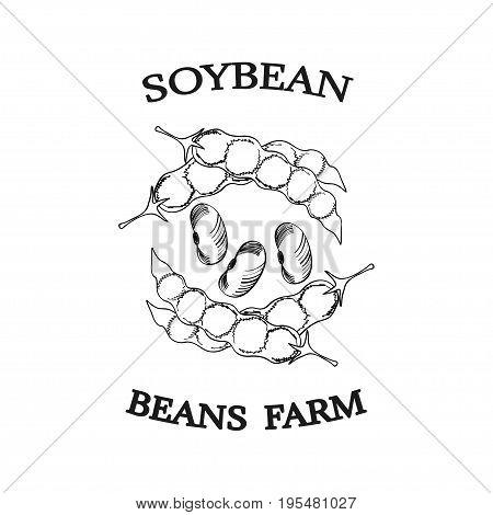 Soybean ink hand draw poster, label or sticker. Organic farm harvest of soya bean pods with seeds in sketch doodle style. Vegetarian or vegan vitamin healthy nutrition food and cuisine.