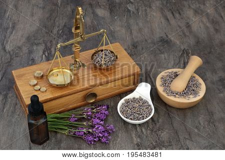 Lavender herb flowers used in natural alternative medicine with old brass scales, aromatherapy essential oil bottle and mortar with pestle.