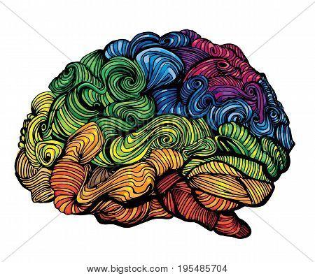 Brain Idea illustration. Doodle vector concept about human brain. Creative illustration on white background
