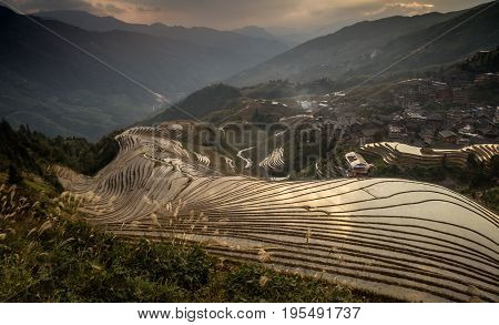 Rolling Rice Patty Fields in the south china mountains