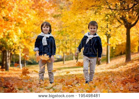 Happy Children, Boy Brothers, Playing In The Park With Leaves