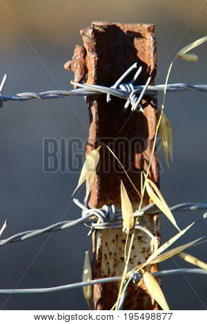 Fence of iron and rusty barbed wire