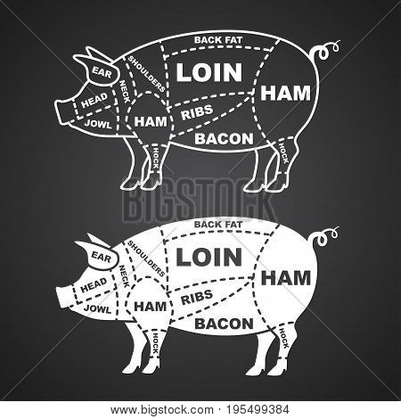 Pork cuts diagram isolated on black vector illustration