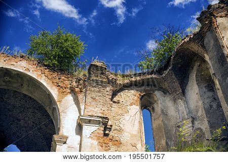 Bushes and grass grow on the walls of the dilapidated church and above them in the sky floating white clouds.