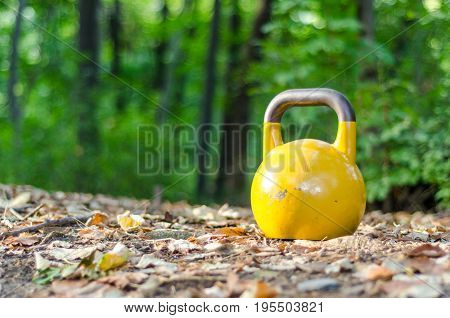Kettle bell. Kettlebell standing on the ground in the nature