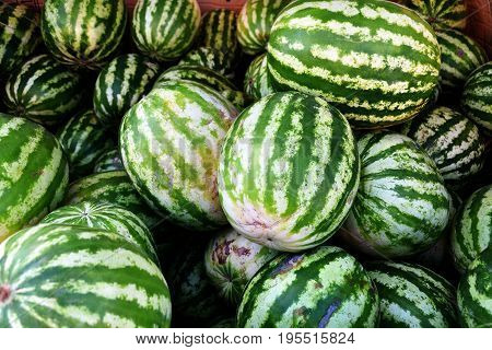 Ripe Watermelons Sold In The Bazaar