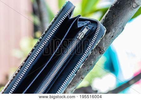 Woman clutch purse. Luxury handmade snakeskin python wallet. Women's accessories.
