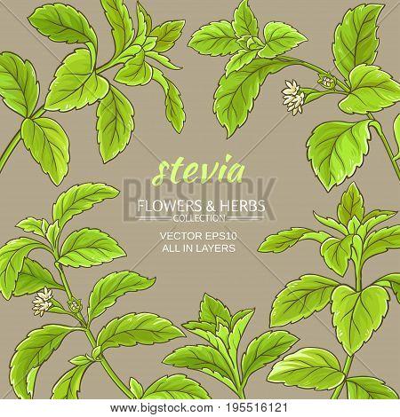 stevia leaves vector frame on color background