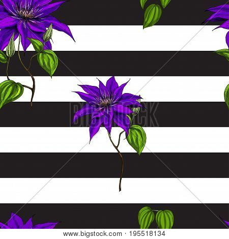 Seamless pattern with purple flowers leaves and stems on black and white background. Vector
