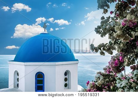 Oia Village, Santorini Cyclade islands, Greece. Beautiful view of a blue dome church surrounded by multicoloured flowers.