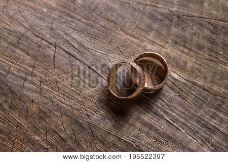 Wedding engagement rings on the old wooden stump with tree rings